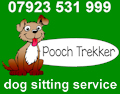 dog sitting services in Liphook, Hampshire and surrounding areas.